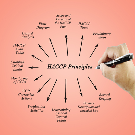 principle: Woman hand writing element of HACCP principle on white background for used in manufacturing.(Training and Presentation)