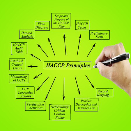 principle: Woman hand writing element of HACCP principle on white background for used in manufacturing.Training and Presentation