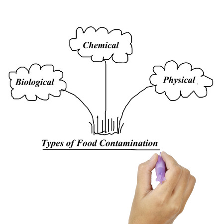 contaminate: Types of food contamination image for use in manufacturing (Training and presentation )