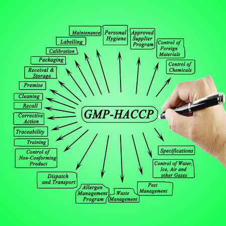 Women hand writing element GMP-HACCP for use in manufacturing Training and Presentation