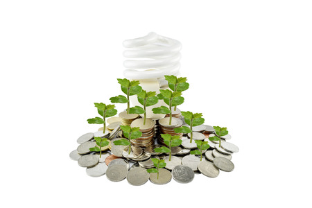 energy savings: Tree and light bulb on coins heap (energy savings concept) on white background