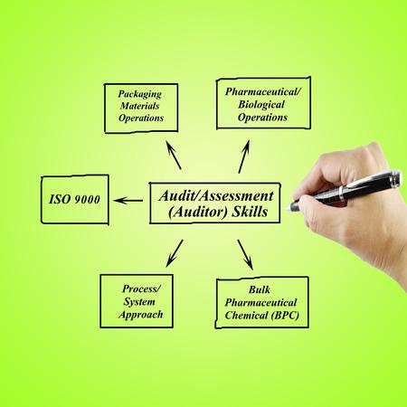 auditoria: las mujeres de escritura a mano Habilidad para AuditAssessmentAuditor conceptTraining negocio y Presentaci�n