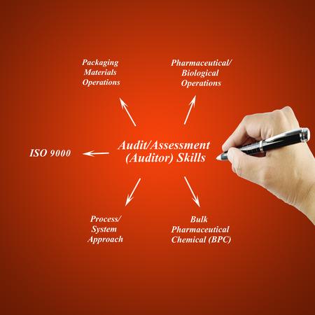 auditoría: las mujeres de escritura a mano Habilidad para AuditAssessmentAuditor conceptTraining negocio y Presentación