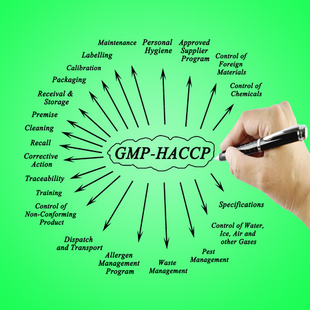Women hand writing element  GMP-HACCP for use in manufacturing (Training and Presentation) Stock Photo