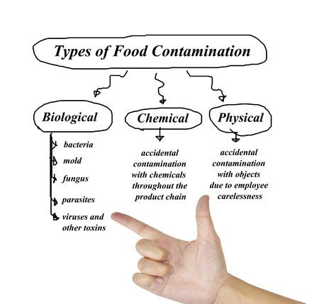 Tipi di immagine di contaminazione degli alimenti da utilizzare nella produzione (formazione e presentazione)