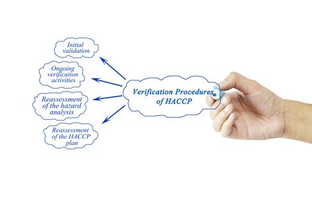 verification: Women hand writing element of Verification Procedures of HACCP for business concept and use in manufacturing(Training and Presentation)
