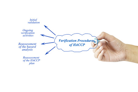 verification and validation: Women hand writing element of Verification Procedures of HACCP for business concept and use in manufacturing(Training and Presentation)