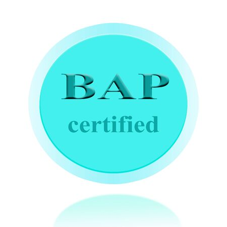 bap: BAP certified icon or symbol image concept design with business women for business concept. business concept