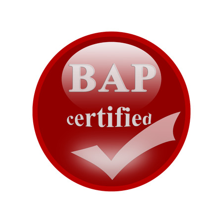 certify: BAP certified icon or symbol image concept design with business women for business concept. business concept