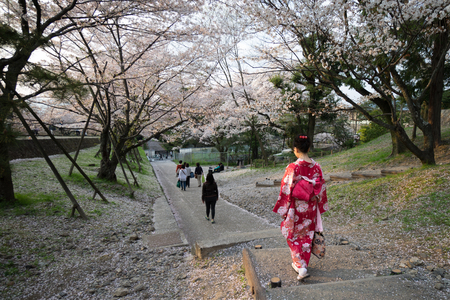 incline: Girl in red kimono with Cherry Blossoms at Keage Incline Editorial