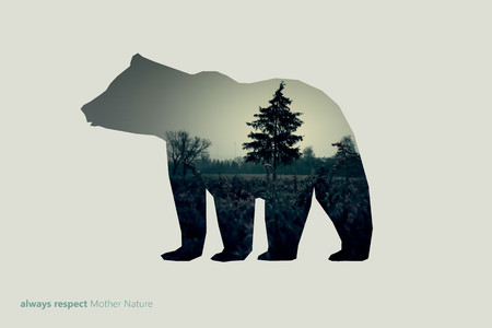 Creative photo poster with double exposure with line icon of bear and the text