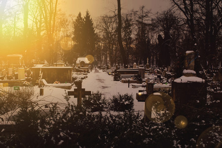 funerary: Dark cemetery during the winter with the strong light from setting sun. Dark vintage colors