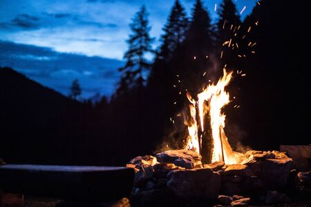 Forest bonfire in the summer, camping time with friends. Copy space.