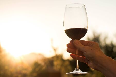 Caucasian woman is holding a glass of red wine, cut out.