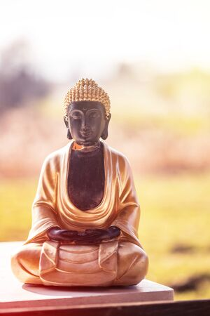 Buddha statue at an Indian temple, summer time. Text space.