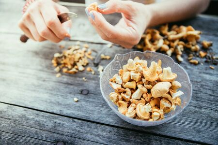 Preparing chanterelle mushrooms on an old rustic wooden table Banque d'images - 142153911