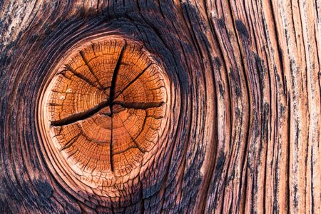 Closeup picture of old rustic wood, knothole Stock Photo