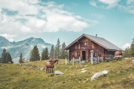 Mountain chalet in Austria: Idyllic landscape in the Alps