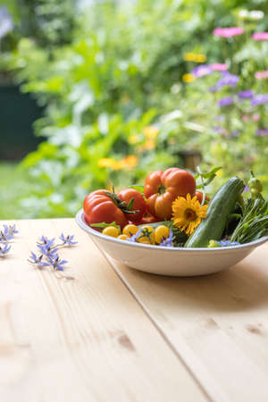 Fresh colorful vegetables in a bowl, raised in the own garden. Tomatoes, zucchini, flowers and herbs.