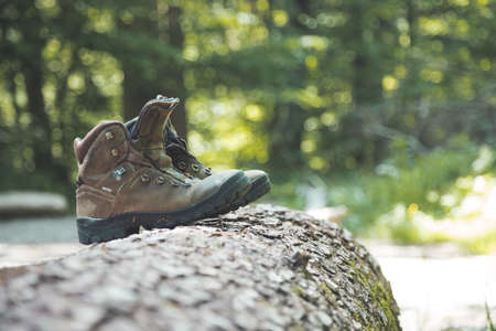 Alpine boots on a tree trunk: hiking trip in the alps, hiking holidays