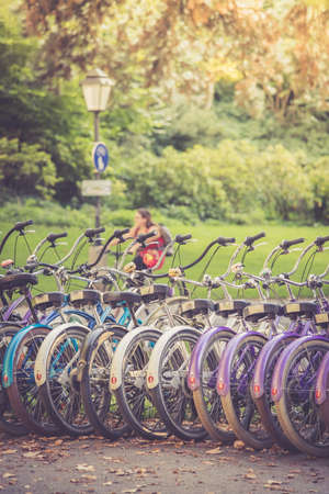 Row of bikes in rental agency, city mobility Stockfoto