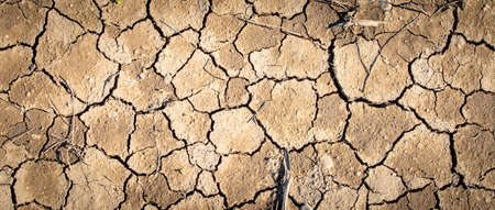 Top view of cracked earth, concept for global warming Banque d'images