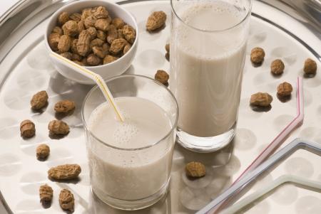 Tiger Mutter Milch in zwei Gl�ser. Erfrischend kaltes Getr�nk aus Valencia. Horchata de chufa.
