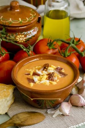 Spanische K�che Salmorejo andalusische kalte Suppe in einem wei�en Teller, serviert mit gekochtem Ei und Serrano-Schinken Selektiver Fokus bei Tageslicht Taken