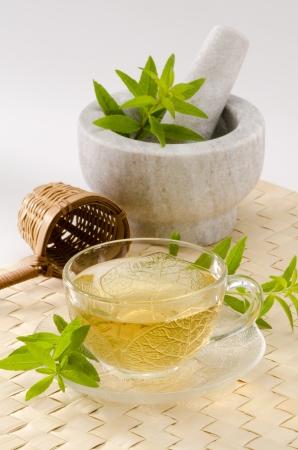 Zitronenverbene Kr�utertee in einem Glas. Aloysia citriodora. Naturheilkunde. Wei�er Hintergrund. Fokus auf den Vordergrund. Lizenzfreie Bilder