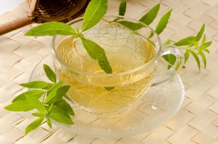 Verbena tisana in una tazza di vetro. Aloysia citriodora. Naturopatia. Sfondo bianco. Concentrarsi sul primo piano. Archivio Fotografico