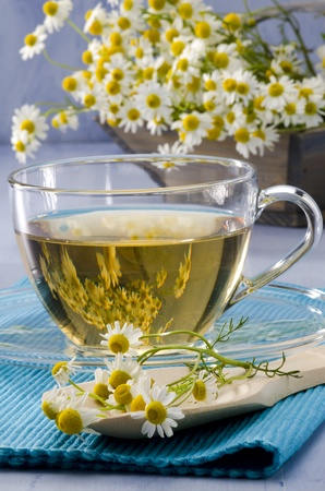 chamomilla: Chamomile Herbal Tea in a glass cup. Naturopathy. Focus on Foreground. Matricaria chamomilla. Stock Photo