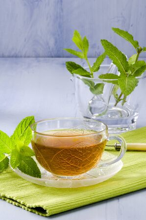 naturopathy: Mint Herbal Tea in a glass cup. Mentha piperita. Naturopathy. Focus on foreground.