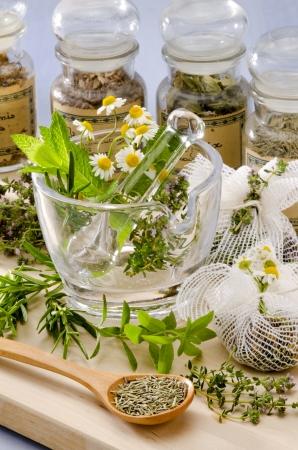 Herbal Medicine. Rosmarin, Minze, Kamille, Thymian in einem Glas M�rtel. Blauer Hintergrund.