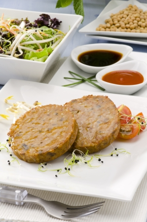 Vegetarian tofu burger on a ceramic plate. Soy products. Focus on foreground. Stock Photo - 20448082