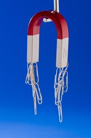horseshoe magnet: Horseshoe magnet holding a bunch of paperclips. Blue background. Stock Photo