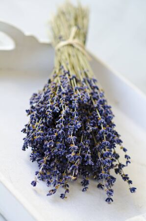 lavandula angustifolia: A bunch of lavender on a white tray. Selective focus. Taken in daylight.