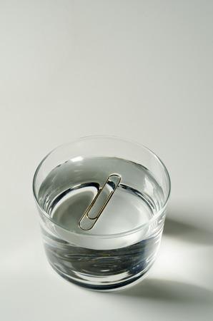 물리학. 표면 장력. 물에 떠있는 종이 클립.