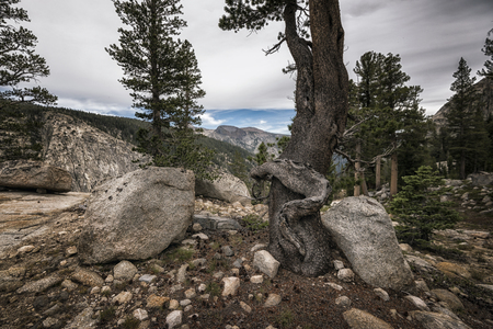john muir trail: Landscape in the Sierra Nevada mountains
