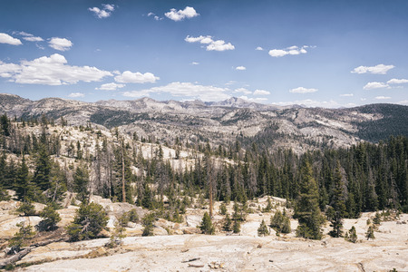sierra nevada: Landscape in the Sierra Nevada mountains