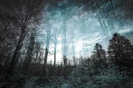 dreamscape: In-camera double exposure of a beach landscape Stock Photo