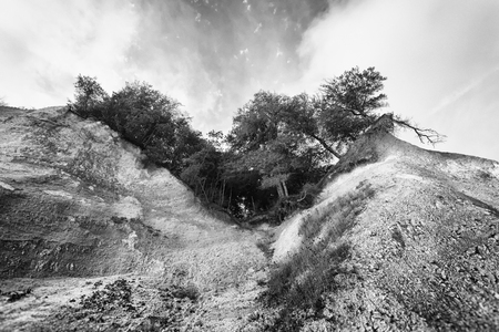 collapsing: Collapsing trees atop a bluff