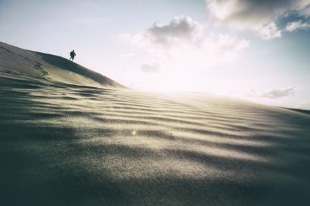sand dunes: Photograph of sand dunes in Denmark Stock Photo