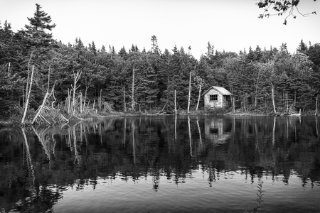 adjacent: Small house in the woods adjacent to a small lake Editorial