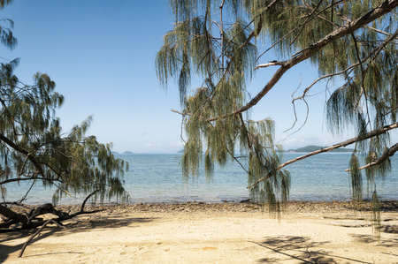 Beach at the East Coast of Queensland, Australia