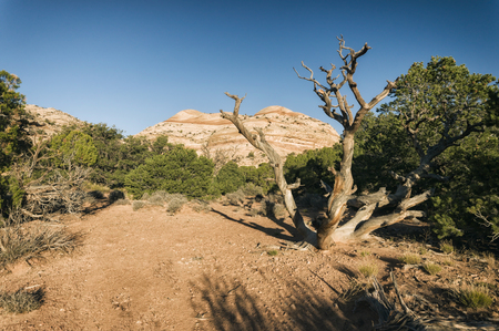 arches national park: Landscape in Arches National Park, Utah, USA