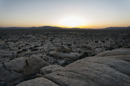 joshua tree national park: Landscape in Joshua Tree National Park, California Stock Photo