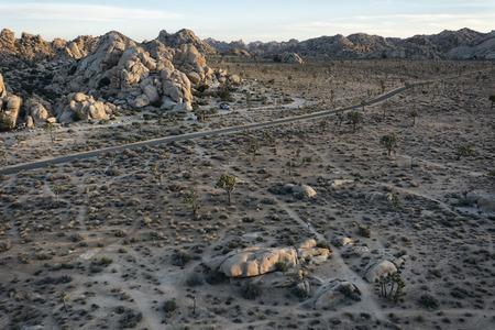 joshua: Landscape in Joshua Tree National Park, California Stock Photo