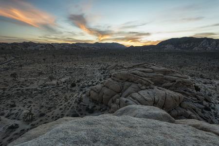 joshua tree  national park: Landscape in Joshua Tree National Park, California Stock Photo