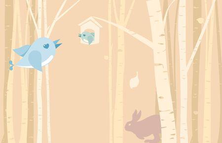 back lit: Birds and Birch grove