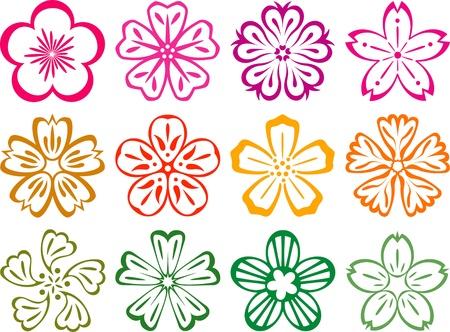 Fiori in stile in Giapponese e cinese, in stile tradizionale giapponese cinese Fiori